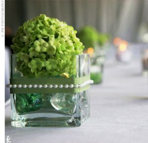 hydrangeagreen